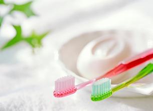 歯ブラシと石鹸の写真素材 [FYI01788450]