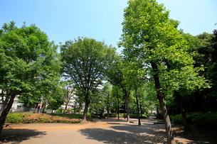 都立殿ヶ谷庭園児童遊園の写真素材 [FYI01788723]