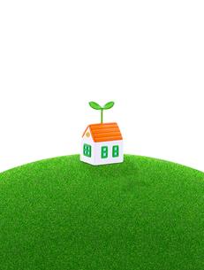 芝生の丘の家と新芽の写真素材 [FYI01788970]