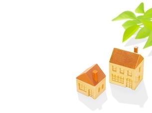 2棟の木の家とポトスのイラスト素材 [FYI01789289]