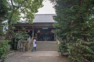 1番 霊山寺 本堂の写真素材 [FYI01790061]