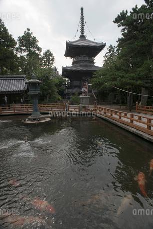 1番 霊山寺の写真素材 [FYI01790204]