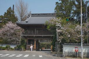 1番 霊山寺 仁王門の写真素材 [FYI01790262]