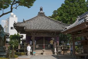 13番大日寺大師堂の写真素材 [FYI01790329]