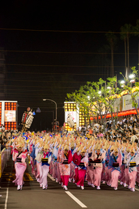 阿波踊り総踊りの写真素材 [FYI01790336]