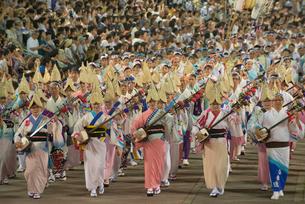 阿波踊り総踊りの写真素材 [FYI01790352]