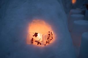 2015小樽雪あかりの路の写真素材 [FYI01790371]