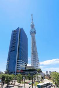 押上駅前から見る東京スカイツリーの写真素材 [FYI01790448]