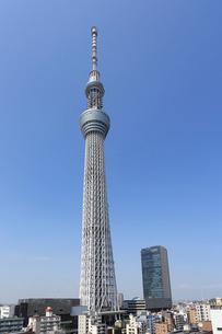 東京スカイツリーの写真素材 [FYI01790468]