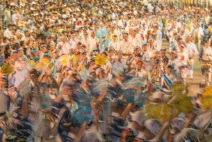 阿波踊り総踊りの写真素材 [FYI01790514]