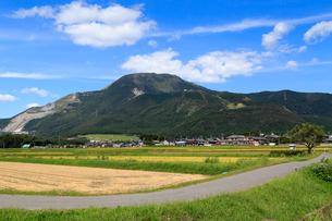 伊吹山と農村風景の写真素材 [FYI01790570]