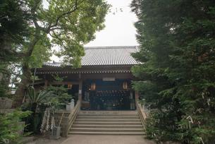 1番 霊山寺 本堂の写真素材 [FYI01790653]