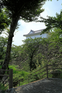 亀山城多聞櫓の写真素材 [FYI01790937]