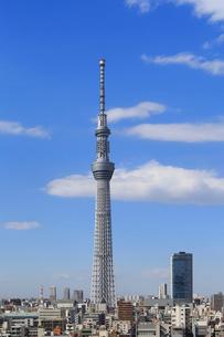 東京スカイツリーの写真素材 [FYI01791038]