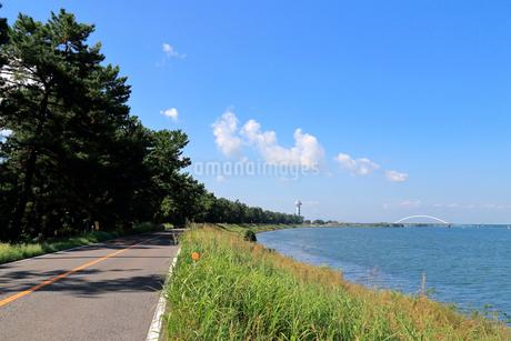 長良川と千本松原の写真素材 [FYI01791048]