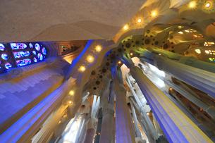 サグラダファミリア聖堂内部の写真素材 [FYI01791239]