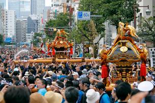深川八幡祭りの写真素材 [FYI01791529]