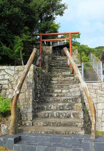 恵比須神社 鯨の骨の鳥居の写真素材 [FYI01791584]