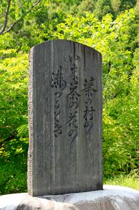 冠山茶の木原の歌碑の写真素材 [FYI01791617]