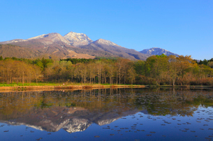 妙高高原・いもり池から望む朝焼けの妙高山の写真素材 [FYI01791792]