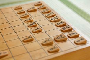 将棋の写真素材 [FYI01791839]