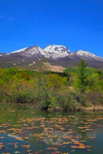 妙高高原・いもり池から望む妙高山の写真素材 [FYI01791895]