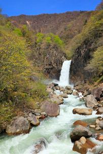 苗名滝の写真素材 [FYI01791898]
