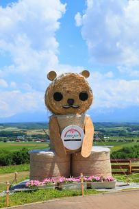 フラワーランドかみふらの 牧草ロールの熊の写真素材 [FYI01791987]