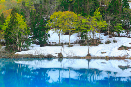 白池と残雪の写真素材 [FYI01792026]