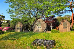 真田氏記念公園の写真素材 [FYI01792042]