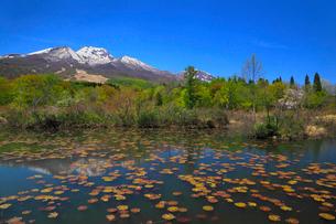 妙高高原・いもり池から望む妙高山の写真素材 [FYI01792076]