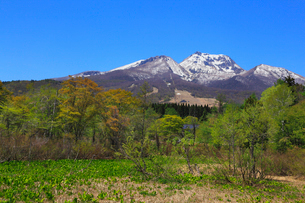 妙高高原・いもり池から望む妙高山の写真素材 [FYI01792077]