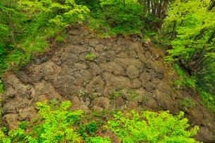 枕状溶岩の写真素材 [FYI01792078]