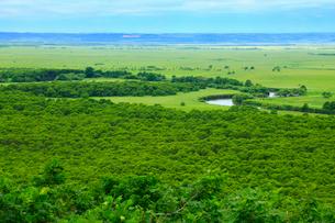 細岡展望台から望む釧路湿原の写真素材 [FYI01792087]