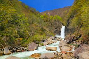 苗名滝の写真素材 [FYI01792155]
