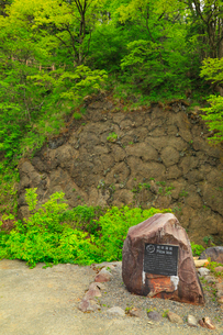 枕状溶岩の写真素材 [FYI01792240]