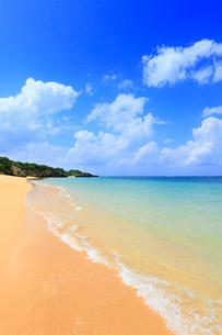 沖縄・石垣島 サンセットビーチの写真素材 [FYI01792296]