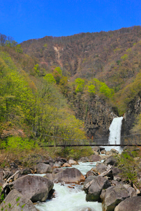 苗名滝と吊り橋の写真素材 [FYI01792322]