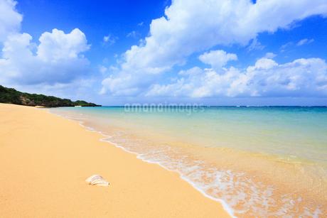 沖縄・石垣島 サンセットビーチの写真素材 [FYI01792386]