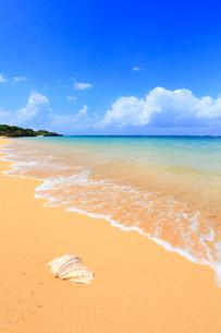 沖縄・石垣島 サンセットビーチの写真素材 [FYI01792414]