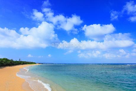沖縄・石垣島 フサキビーチの写真素材 [FYI01792462]