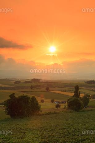 美瑛・三愛の丘展望台から望む夕日の写真素材 [FYI01792509]