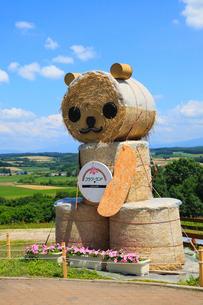 フラワーランドかみふらの 牧草ロールの熊の写真素材 [FYI01792526]