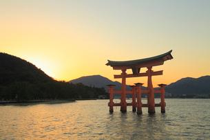 宮島 大鳥居と夕焼け空の写真素材 [FYI01792635]