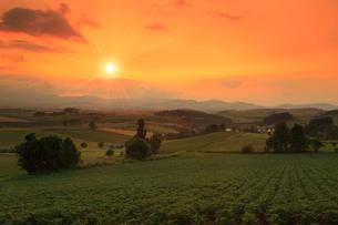 美瑛・三愛の丘展望台から望む夕日の写真素材 [FYI01792835]