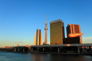 吾妻橋(浅草)からの夕日に染まる東京スカイツリーの写真素材 [FYI01792864]