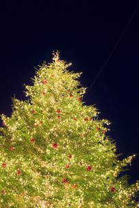 クリスマスツリーのイルミネーションの写真素材 [FYI01792869]