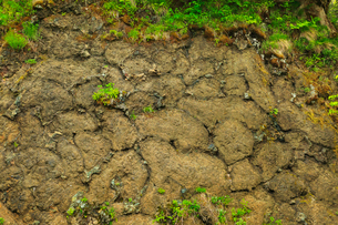 枕状溶岩の写真素材 [FYI01792903]