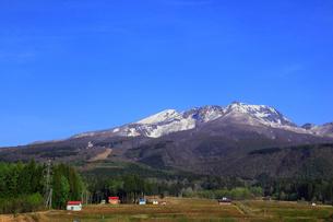 妙高高原・杉野沢から望む妙高山の写真素材 [FYI01792928]