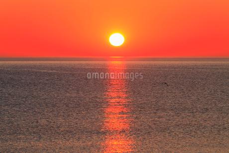 オホーツク海と朝日の写真素材 [FYI01792995]